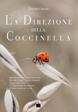 """""""La direzione della coccinella"""" – Davide Ceraso"""